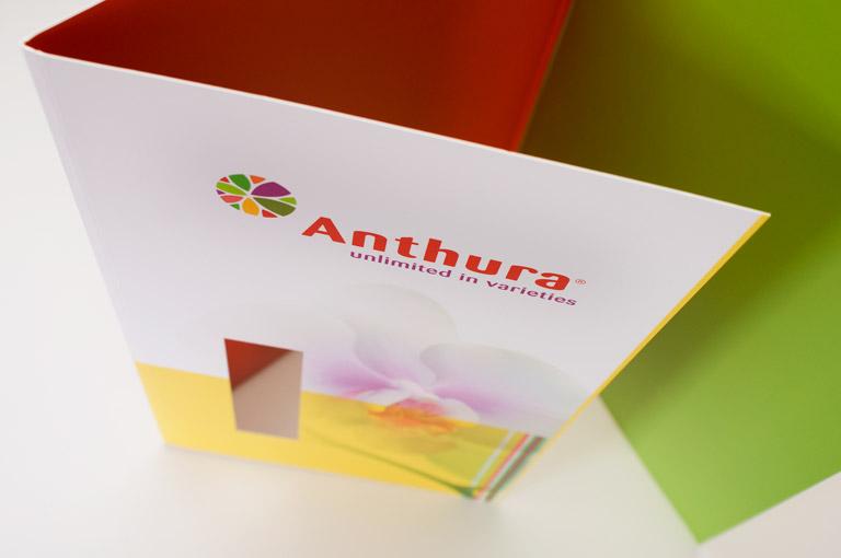 Anthura huisstijl ontwerp